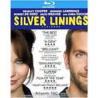 Silver Linings Playbook (US)
