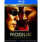 Rogue Assassin (2007)