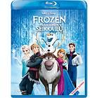 Frozen: Huurteinen Seikkailu (FI)