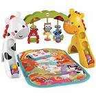 Fisher-Price Newborn-to-Toddler