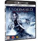 Underworld: Blood Wars (UHD+BD)
