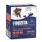 Bozita Dog Chunks in Jelly Salmon 6x0,37kg