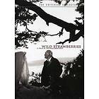 Wild Strawberries - Criterion Collection (US)