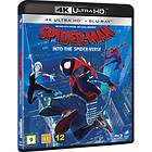 Spider-Man: Into the Spider-Verse (UHD+BD)