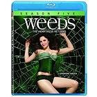 Weeds - Season 5 (US)