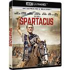 Spartacus (UHD+BD)
