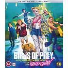 Birds Of Prey (UHD+BD)