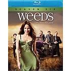 Weeds - Season 6 (US)