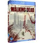 The Walking Dead - Säsong 1