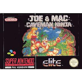 Joe and Mac: Caveman Ninja