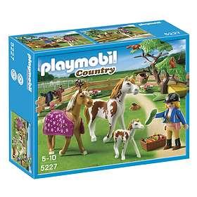 Playmobil Pony Ranch 5227 Paddock with Horses and Pony