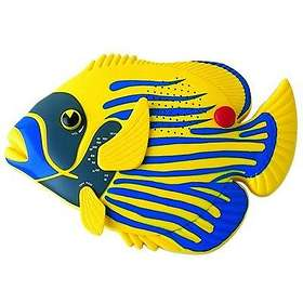 Steepletone Angel Fish