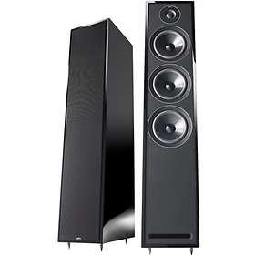 Acoustic Energy 305