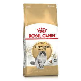 Royal Canin Breed Norwegian Forest Cat 10kg