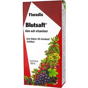 Salus Floradix Blutsaft 500ml