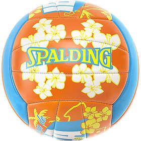 Spalding Beach Ibiza