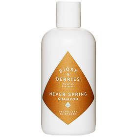 Björk & Berries Never Spring Shampoo 250ml