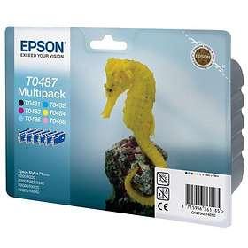 Epson T0487 (6 Colours)