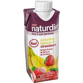 friggs naturdiet smoothie