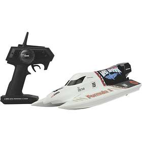 Amewi Mad Shark Brushless RTR