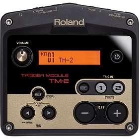 Roland TM-2 Module