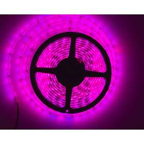 LEDwarehouse LED Slinga IP68 14,4W/m RGB 60L (5m)