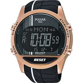 Pulsar Watches PV4010