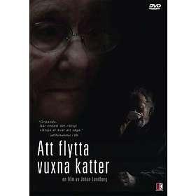 Att Flytta Vuxna Katter
