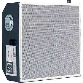Martin Audio CS10 (unité)