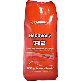 Fairing Recovery R2 1,25kg