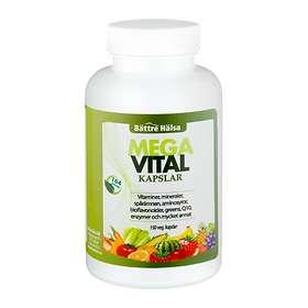 mega vital bättre hälsa