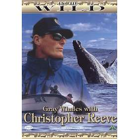 In the Wild: Gray Whales with Christopher Reeve