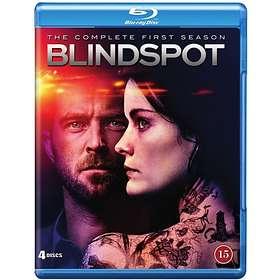 Blindspot - Säsong 1