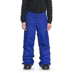 DC Shoes Banshee Snow Pants (Jr)