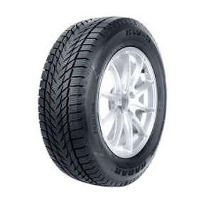 Radar Tires RW 5 Ice 195/65 R 15 91T