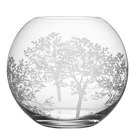 Orrefors Organic Vas 205mm