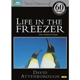 Life in the Freezer - David Attenborough (UK)