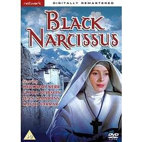 Black Narcisuss (UK)