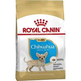 Royal Canin BHN Chihuahua Junior 1.5kg