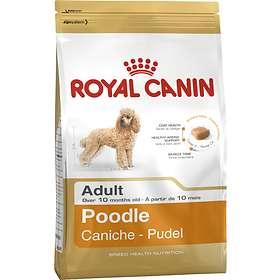 Royal Canin BHN Poodle 1.5kg