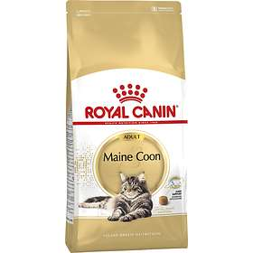 Royal Canin Breed Maine Coon 31 10kg