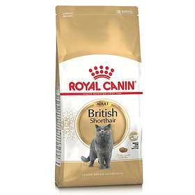 Royal Canin Breed British Shorthair 10kg