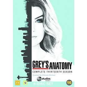 Grey's Anatomy - Säsong 13