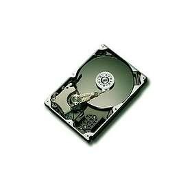 Maxtor DiamondMax 10 6L200M0 8MB 200GB