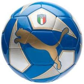 Puma World Cup Licensed Fan Ball
