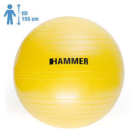 Hammer Sport Gymboll 55cm