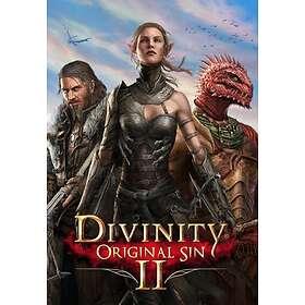 Divinity: Original Sin 2 - Divine Edition (PC)