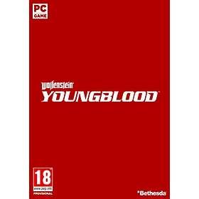 Wolfenstein: Youngblood (PC)