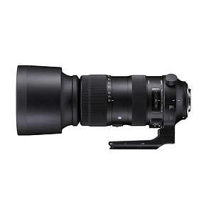 Sigma 60-600/4.5-6.3 DG OS HSM Sports for Nikon