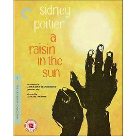 Raisin in the Sun - Criterion Collection (UK)